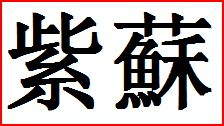 Shiso, Shiso-Kresse - in japansiche Lebensmittel